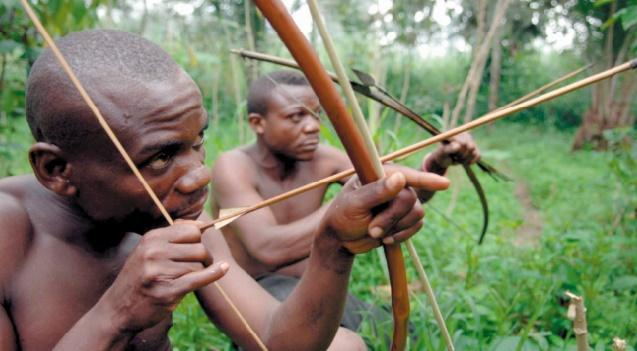 Un mécanisme pour sauver les forêts accusé de bafouer les droits des autochtones