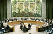 L'ONU demande la libération des navires de «la flottille de la liberté» :  Le Conseil de sécurité réclame une enquête transparente