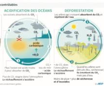 Même un réchauffement de 2°C aura une incidence importante