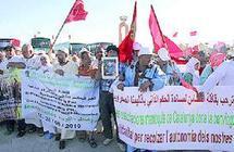 Laâyoune : La Caravane de la paix chaleureusement accueillie sur la place du Méchouar