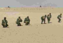 Le Polisario persiste à violer la légalité internationale