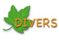 Divers