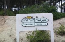Commémoration des soulèvements du 16 août à Oujda et du 17 août 1953 à Tafoughalt : Deux événements majeurs dans la lutte pour l'indépendance
