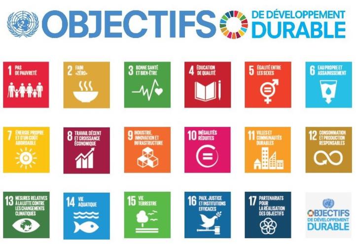 Répercussions des ODD sur les politiques publiques aux niveaux sectoriel et territorial