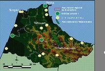 Tanger-Tétouan  : Onze listes en lice pour les élections partielles de la chambre des conseillers