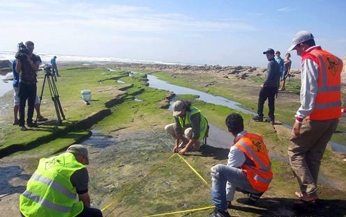 Le site d'empreintes de dinosaure d'Anza, patrimoine culturel national