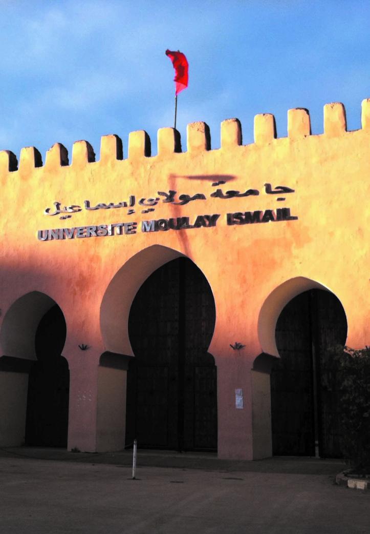 Le Centre de recherche de l'Université Moulay Ismaïl mis à l'index