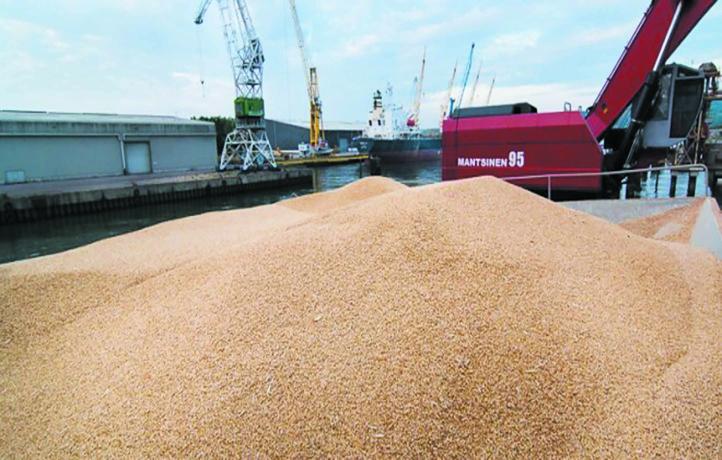 La facture mondiale des importations alimentaires a fortement augmenté
