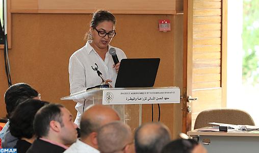 Aid Al Adha : 108.000 éleveurs enregistrés et 3,7 millions d'animaux identifiés