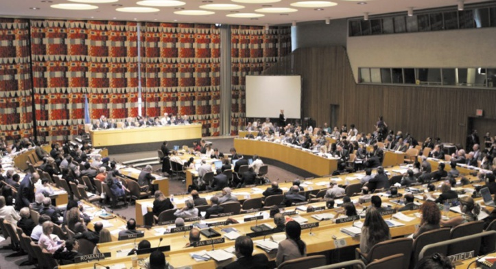 Le Conseil économique et social des Nations unies.