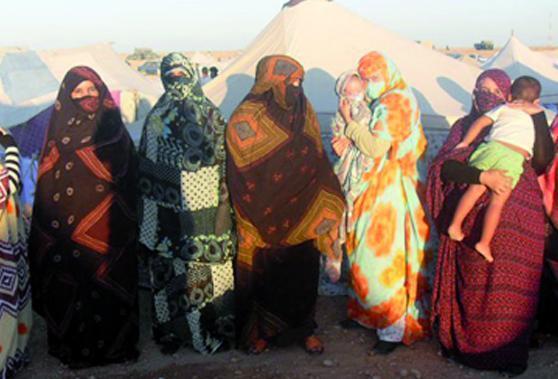 Imperturbables, les protestataires réitèrent leurs revendications : Les campeurs de Laâyoune bravent la pluie