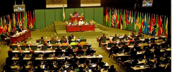 Des afro-députés marocains en Afrique du Sud