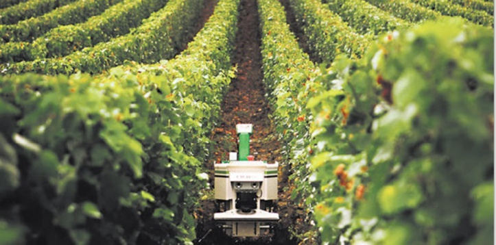 Appel au transfert de technologies aux agriculteurs africains