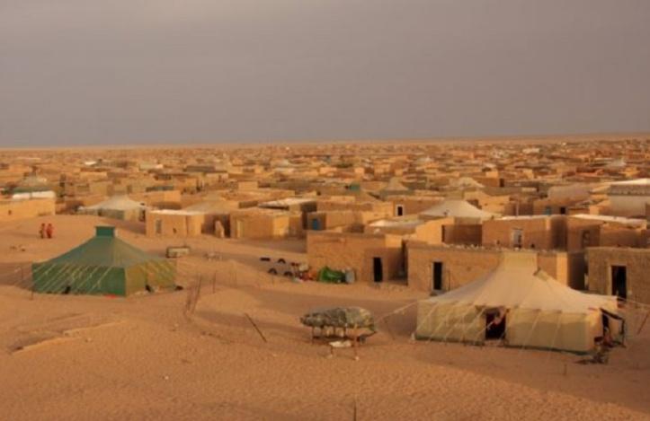 Sahara marocain : Quand un navet de «Democracy now» vire à la propagande !