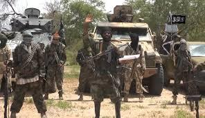 Prise d'une ville du Nigeria  par Boko Haram
