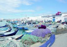 Pêche artisanale : Journée d'études au profit des coopératives