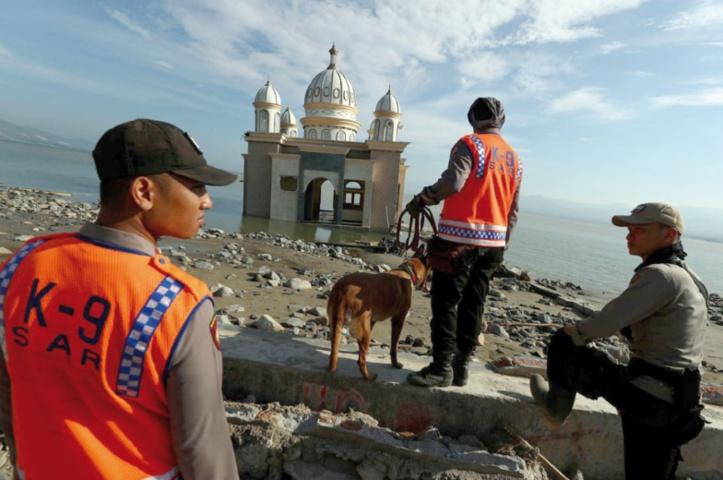 Plus de 1000 disparus après le séisme qui a frappé l'Indonésie