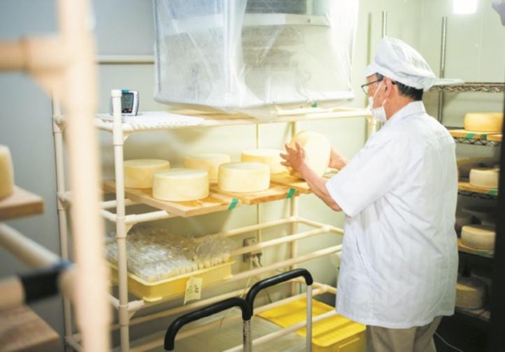 Les fromagers nippons se préparent à la concurrence européenne
