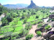 Les professionnels tirent la sonnette d'alarme : Le tourisme en plein marasme à Tafraout