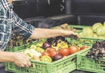 Manger bio réduit-il les risques de cancer? Difficile à prouver