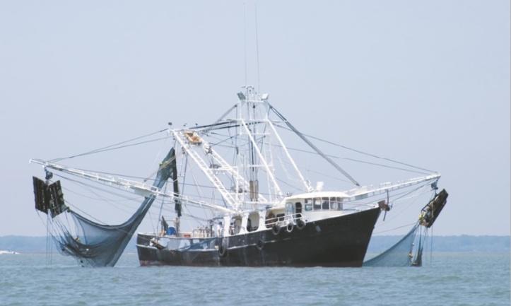 Vers une ratification certaine de l'accord de pêche Maroc-UE