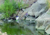 Transformé en décharge sauvage et déversoir des eaux usées par les riverains : Assif N'Tahala à l'épreuve de la pollution