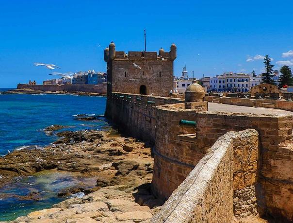 12 certificats négatifs délivrés en novembre dernier à Essaouira