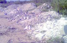 Essaouira   : Poursuite du massacre de la biodiversité