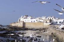 Essaouira : Démantèlement de 35 bandes criminelles