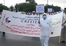 """""""Marche nucléaire"""" vers le Parlement : A la recherche d'atomes crochus"""