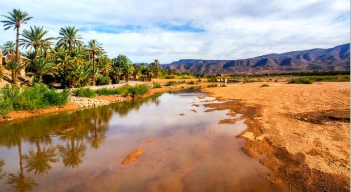 Les oasis à l'épreuve du réchauffement climatique