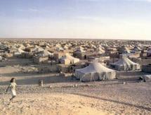 Camps de Tindouf : La tribu d'Ouled Dlim s'élève contre la campagne d'exactions et d'arrestations