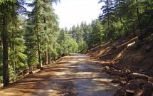 Les techniciens forestiers du Moyen Atlas montent au créneau : Primes de risque et réglementation des horaires de travail réclamées avec insistance