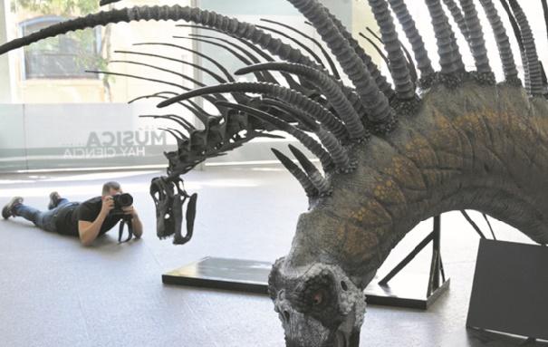 Un dinosaure se défendant avec ses épines découvert en Argentine