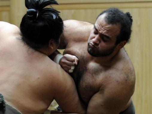 Insolite : Lutteurs de sumo