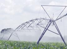 Poursuite de la session des domaines agricoles de l'Etat en septembre prochain
