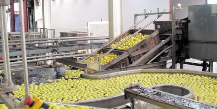 L'expérience marocaine en matière d'agro-industrie mise à Dakhla
