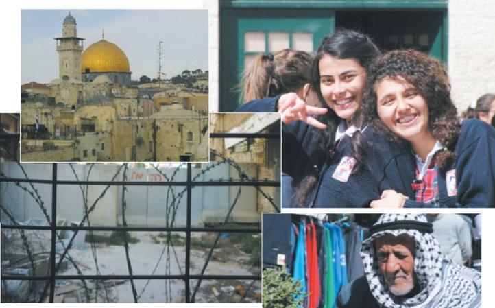 Le char et l'olivier Une autre histoire de la Palestine