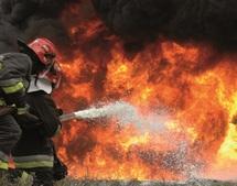 La forêt d'Amskroud en flammes : Le feu ravage des dizaines d'hectares d'arganiers