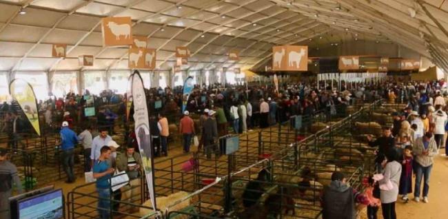 Le Maroc et le Bénin renforcent leur coopération agricole