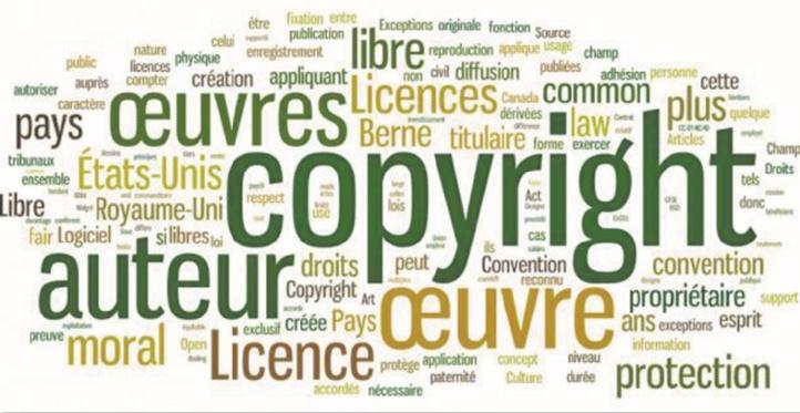 Vers une protection effective du livre et des droits d'auteur