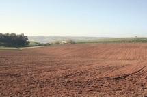 Essaouira : Un nouveau souffle pour le secteur agricole