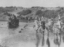 Le cas de la guerre du Rif-1921-1926 : Crimes internationaux et droit des victimes à réparation(I)