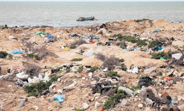 Tourisme : La Tunisie veut partir en guerre contre le terrorisme environnemental