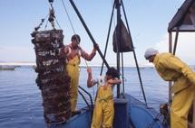 Avis de tempête sur l'Omnium marocain de pêche