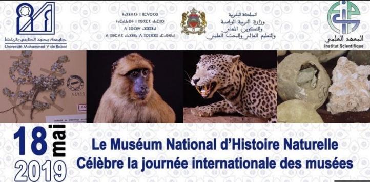 La faune et la flore à l'honneur lors de la journée internationale des musées
