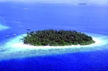 Dix propositions pour sauver les océans