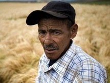 En Afrique du Sud, des fermiers blancs aident leurs nouveaux collègues noirs