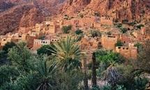 Les oasis marocaines entre développement durable et besoins sociaux