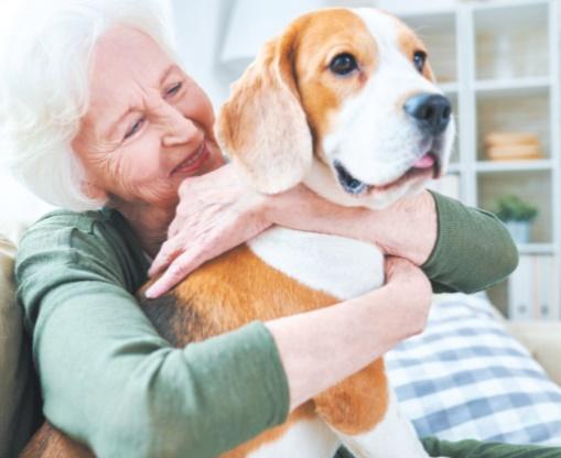 Avoir un chien aide à lutter contre les problèmes de coeur